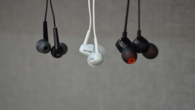 Pishtaz Earphone